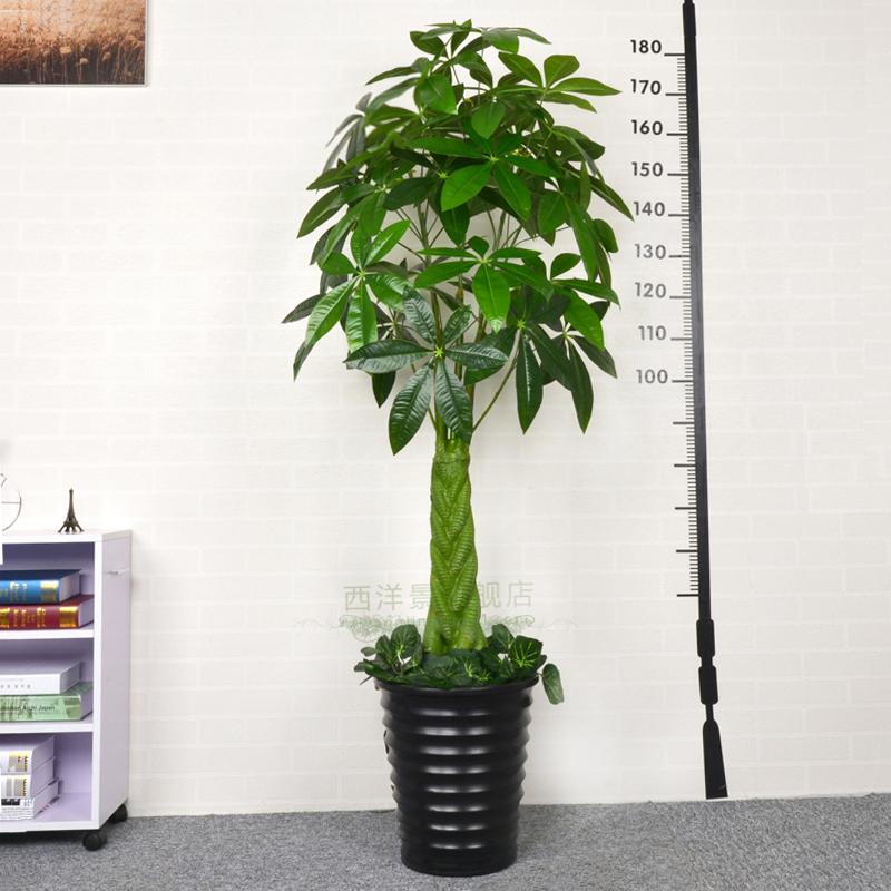 Hoge Kwaliteit Grote Nep Planten-Koop Goedkope Grote Nep Planten ...