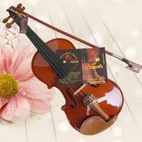 Скрипка C&S 4/4,   . kanon