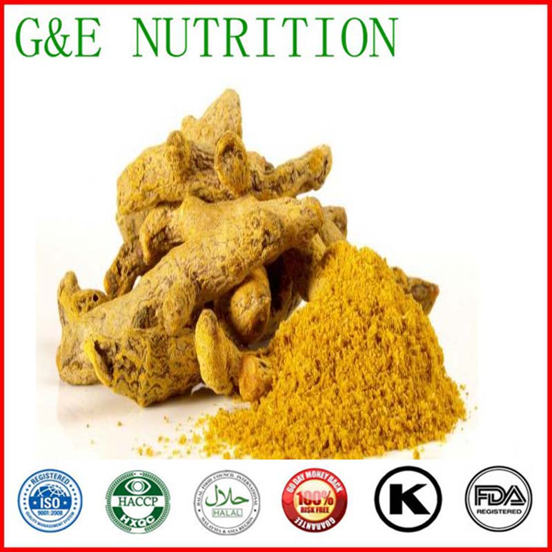 China manufacture supplier top quality curcumin extraction plant curcuma extract curcumin extract 600g<br>