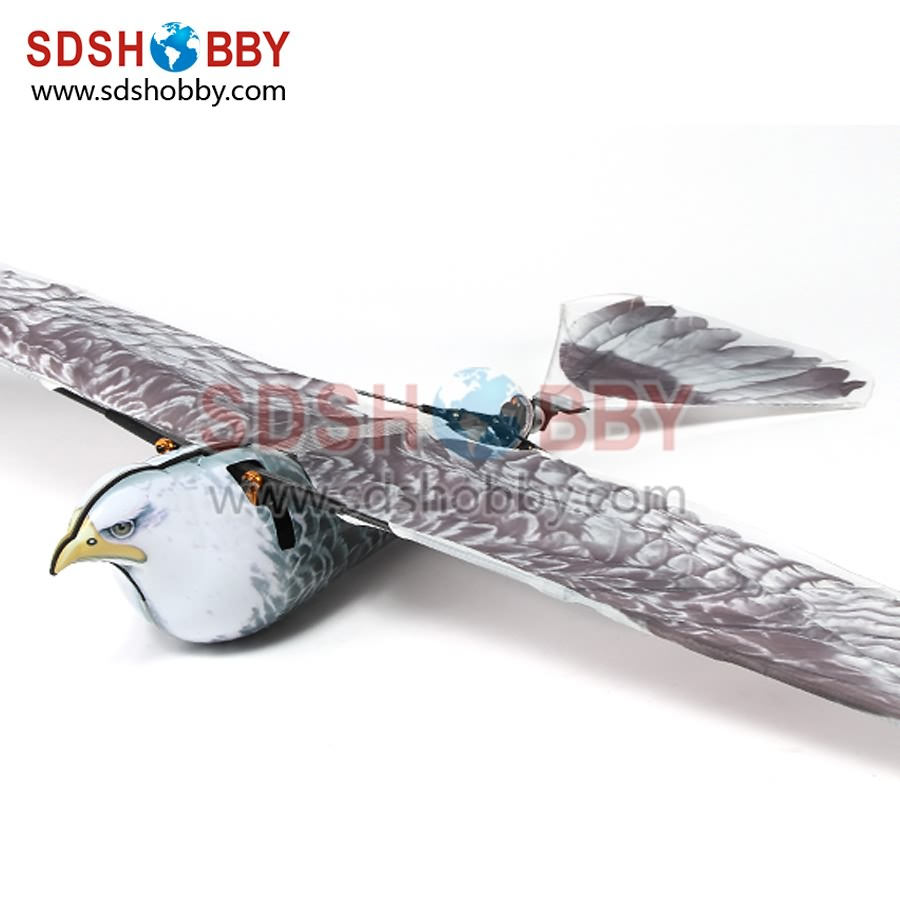 1200mm Spybird Eagle Ornithopter Spy Bionic Eagle Kit PNP RC Aiaplane<br><br>Aliexpress