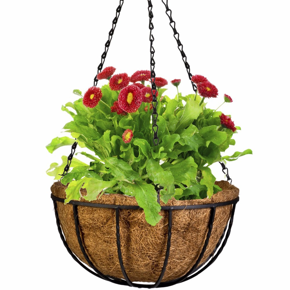 Decorative Hanging Flower Baskets : Cm wrought wall iron hanging flower basket decorative