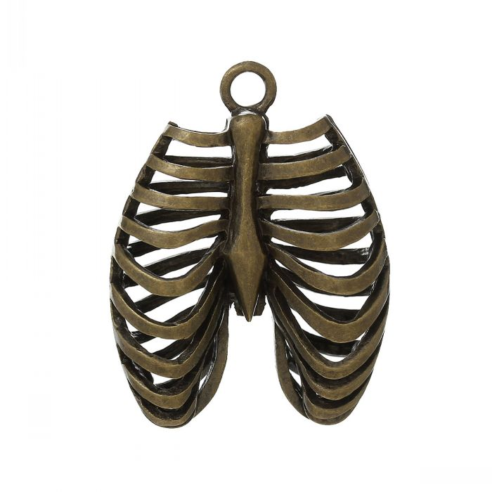 "Dorabeads Charm Pendants Anatomical Human Rib Cage Antique Bronze Hollow 4cm x 3.1cm(1 5/8"" x1 2/8""),3PCs(China (Mainland))"