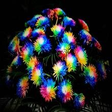 Rainbow200 семена Цветок Хризантемы Семян редкий цвет новое прибытие DIY Домашняя Сад цветочных растений(China (Mainland))
