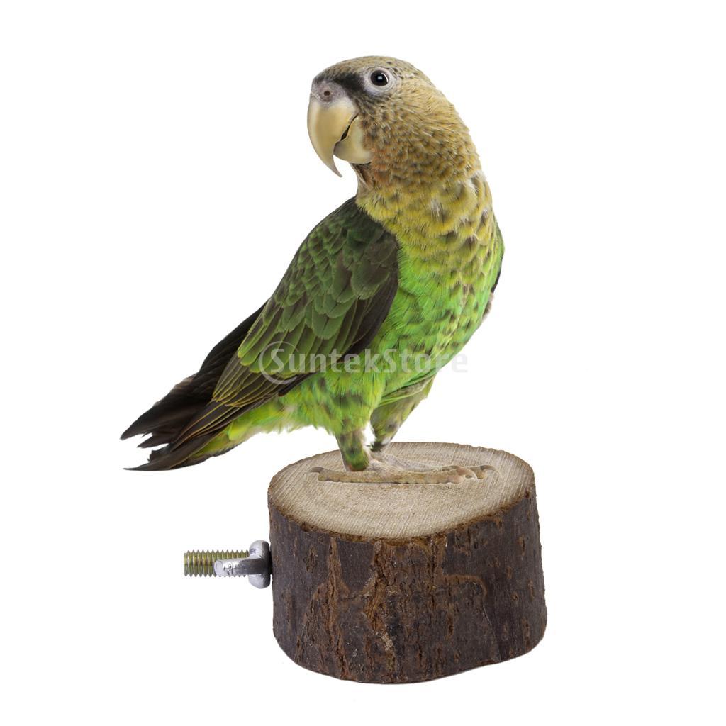 игрушка-для-птиц-s-2015-dia-236276