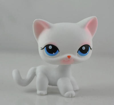 Littlest Pet Shop Cat Child Girl Figure Toy Loose LPS851(China (Mainland))