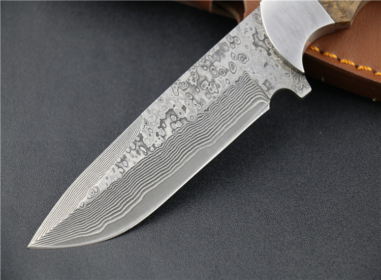 Buy New Free shipping!!!Damascus Blood Fox Fixed Blade Knife with Damascus Steel High Quality Steel Hunting Knife EDC Knife with cheap