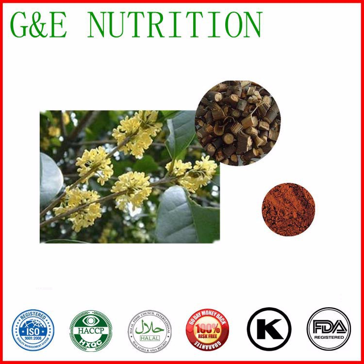 High quality Cassia Twig Extract  500g<br><br>Aliexpress