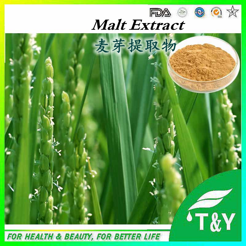 Low price wholesale Malt Extract Hordenine,Barley Malt Extract 600g/lot<br><br>Aliexpress