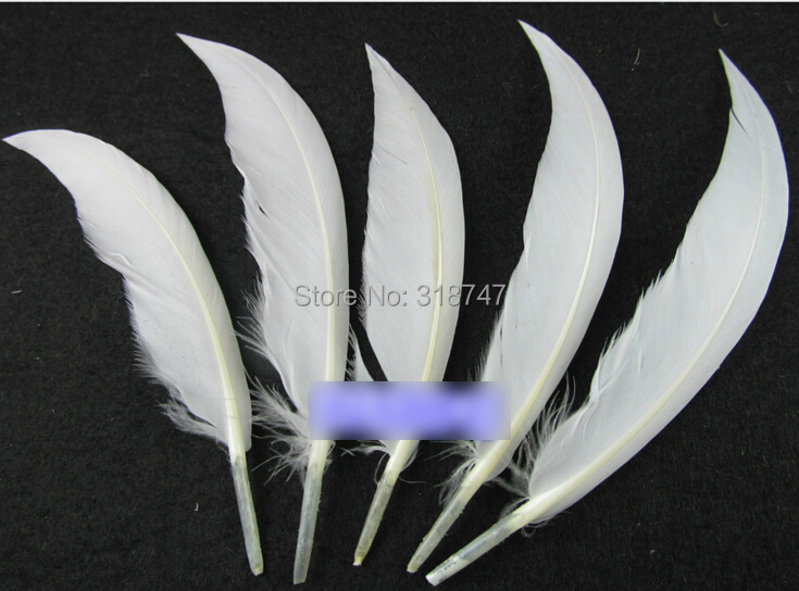 10 15cm Natural Feathers White Feathers Diy Feather Plume Decoration Accessorie 6pcs Pack 077015
