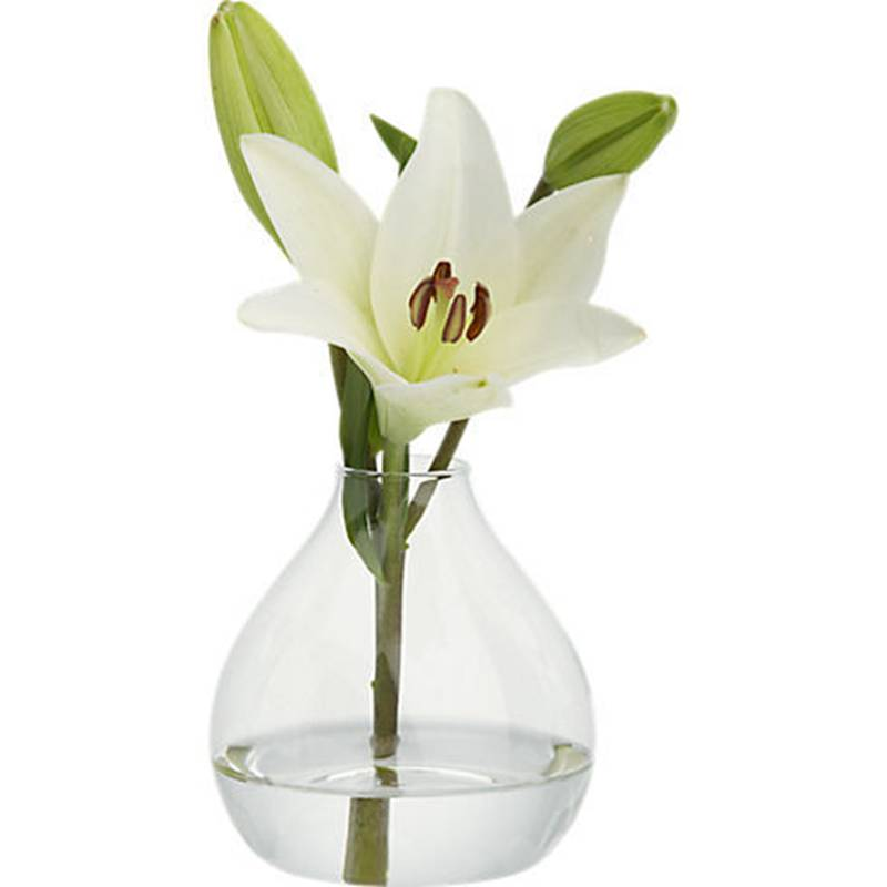 jarrones de cristal del florero terrario lindo macetas plantador de aire del piso de la boda jarrn decorativo moderno vaso de v