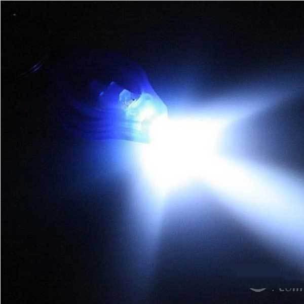 DragontailPeak Mini LED Flashlight holder keyring Keychain Torch New(China (Mainland))