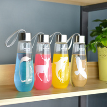 480ML Water Bottle With Bag Leak Proof  Glass Water Bottle Drinkware Transparent Water Bottles Cute Anima Outdoor Sports Tumbler(China (Mainland))