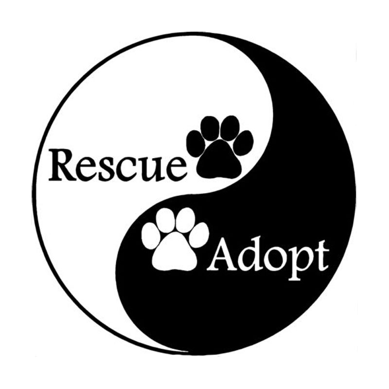 Car stying 15CM*15CM Automobile modeling interesting personality dog PAWS rescue of Yin and Yang of car stickers 11 Colour Jdm(China (Mainland))