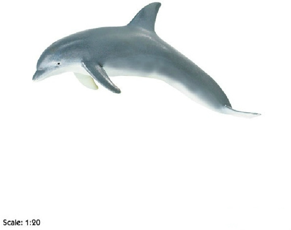Dolphin Model Toy Marine Biology Model Toy Teaching Model Action Figures Kids Gift Photography Props Home Decor(China (Mainland))