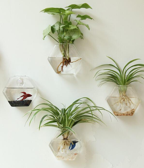 Buy 1pc Glass Vase Home Decoration