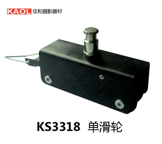 High quality rail crane accessories ceiling single pulley connected with the brake pulley photography single pulley NO00DC(China (Mainland))