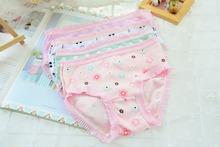 1pcs 2016 new fashion baby girl panties cartoon briefs 100% cotton children girl underwear 1-8 children clothing