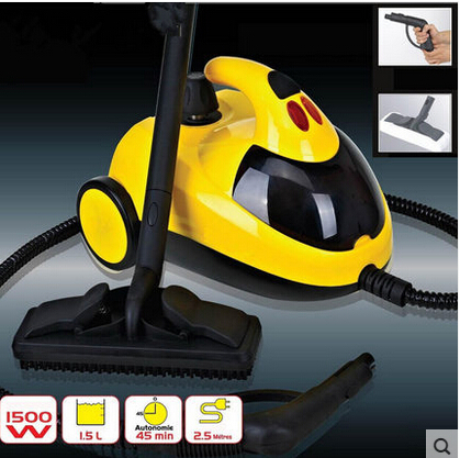 Roti Maker Best Quality High Temperature Multifunctional Steam Cleaner Car Film Sauna Cleaning Machine Household Free Shipping(China (Mainland))