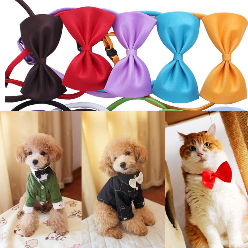 2 pcs Fashion Dog Cat Pet Puppy Toys Kids Cute Bow Tie Necktie Collar Clothes Hot pet accessories new(China (Mainland))