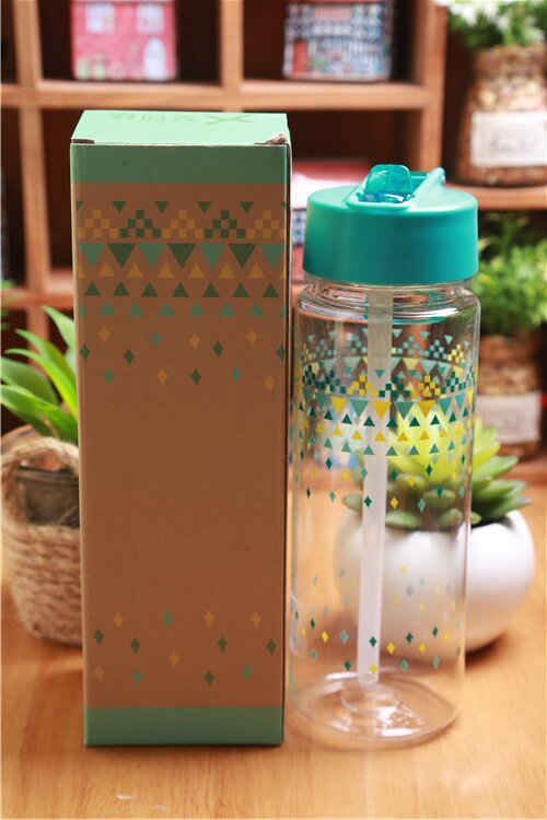 2015 plastic water bottle with straw man woman lover sport space cup drinkware 600ml my bottle