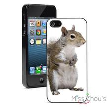 American Gray Squirrel Protector back skins mobile cellphone cases for iphone 4/4s 5/5s 5c SE 6/6s plus ipod touch 4/5/6