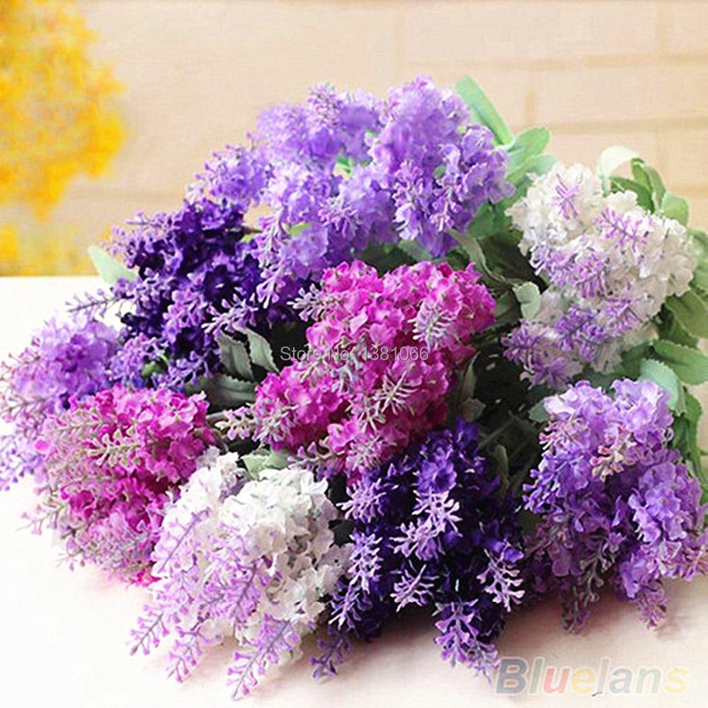 Гаджет  English lavender seeds, lavender angustifolia, imported vanilla seeds of native species - 100 pcs seeds None Дом и Сад