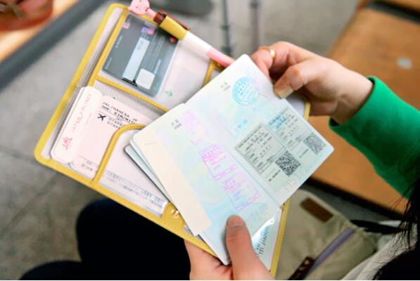 Гаджет  2015 Handy Solid Long Passport Holder Cover Brand Travel Wallet Business Card Documents Multi-functional Tourism BB022-SZ+ None Камера и Сумки
