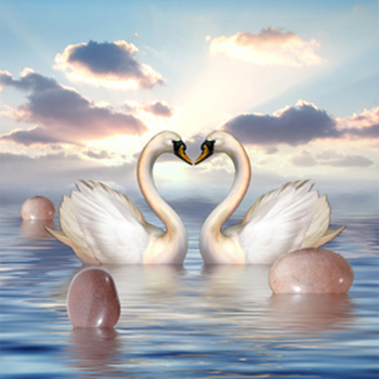 5D diamond embroidery diy Diamond painting round resinl cross stitch swan in river best gift for lover scenery series(China (Mainland))