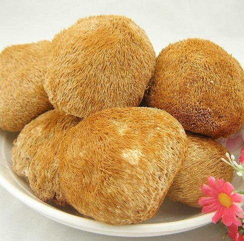 Гаджет  No pollution green food high quality hericium erinaceus, the Chinese traditional famous dishes, Edible fungus,Dry goods None Еда