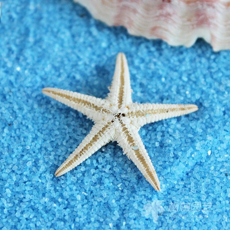 100pcs miniature garden embellishments flat back resins starfish nautical decor decoration accessories free shipping(China (Mainland))