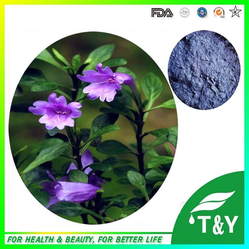 Indigo Naturalis Powder,Strobilanthea Cusia Extract,Strobilanthea Cusia Extract Powder <br><br>Aliexpress