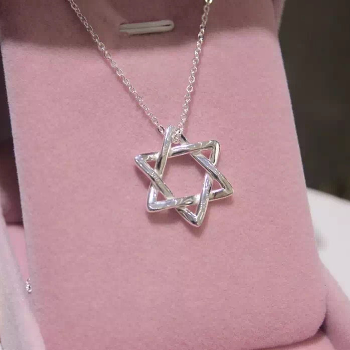 Star of David Hebrew Shield 925-sterling-silver Necklace | Jewish Symbol Sterling-silver-jewelry Solomon Necklaces & Pendants(China (Mainland))