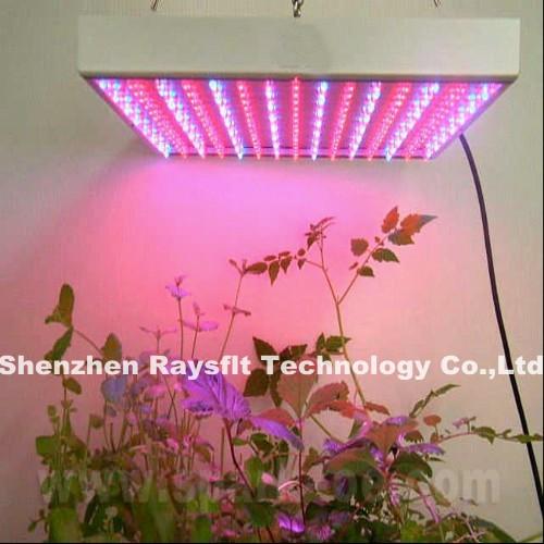 55*3W chip led grow light 120W all new grow light red: blue 49:6<br><br>Aliexpress