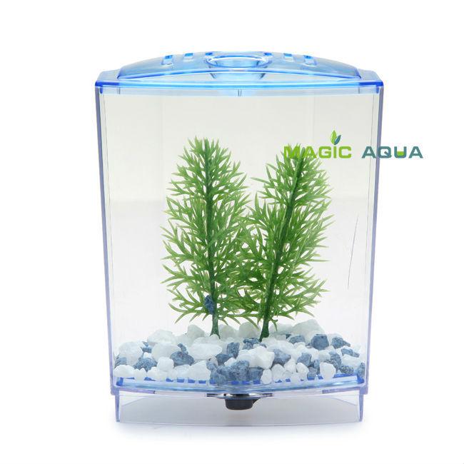 Aquarium poissons betta achetez des lots petit prix for Aquarium petit prix