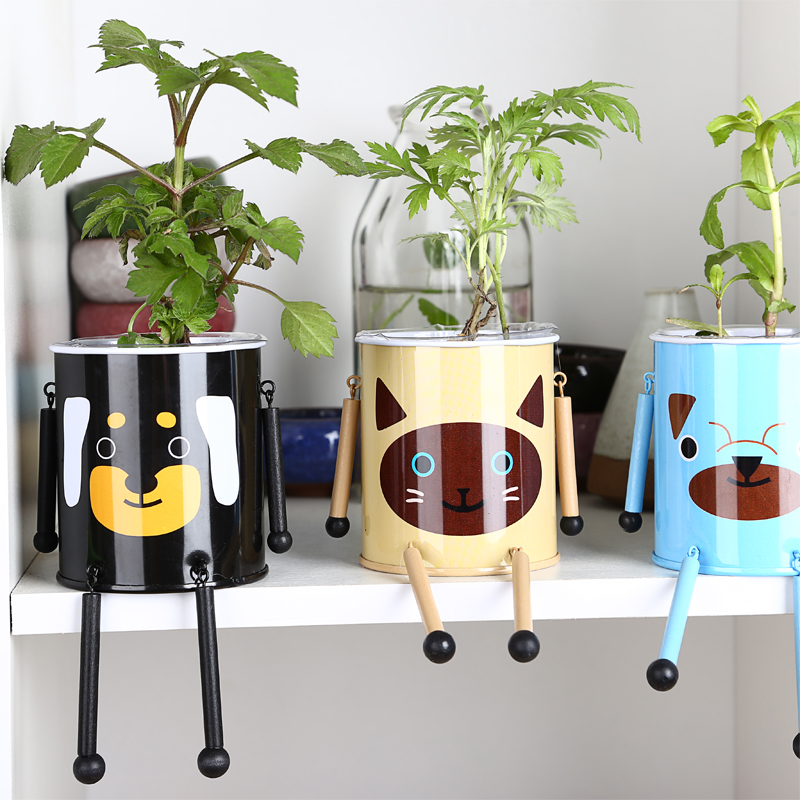 Cute DIY Armored Pet Mini Bonsai Tin Plate Iron Plants Flower Planter Pot with Seeds Soil for Indoor Desktop Decoration(China (Mainland))