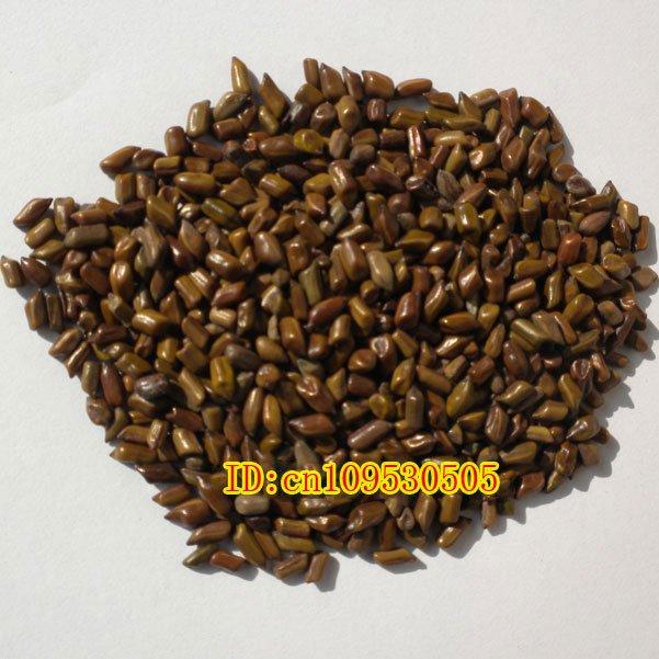 Free Shipping 250g Semen Cassia, Cassia Seed, Eyesight Improvement Chinese Herb(China (Mainland))
