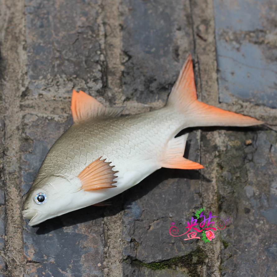 Online kopen wholesale fake fish props uit china fake fish props groothandel - Keuken decoratie model ...