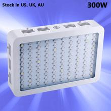 König 300 Watt Weiß Full Spectrum 10 Bands LED Wachsen licht Panel Für Medizinische Blume Pflanzen Vegetative und Blüte Bühne(China (Mainland))