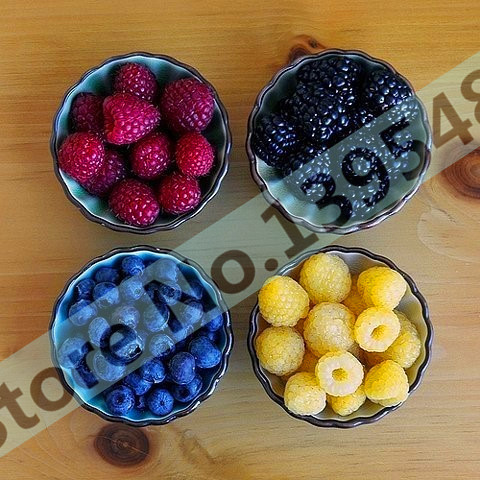 4 kinds of color 4000 PCS raspberry seeds (1000 blue, 1000black, 1000 red, 1000 yellow) delicious fruit plants(China (Mainland))