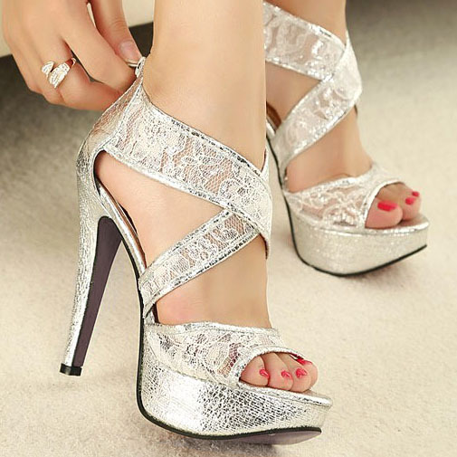 Gorgeous Silver Heels