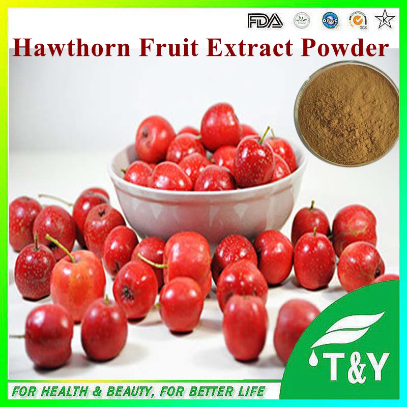 High quality Natural Hawthorne Berry Extract-- Hawthorn Fruit P.E.<br><br>Aliexpress