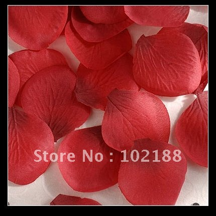 1kg(7500pcs) Red Silk Rose Petals Wedding Party Flower Favors - Ningguo Stylish Convertible Gift Packaging Plant store