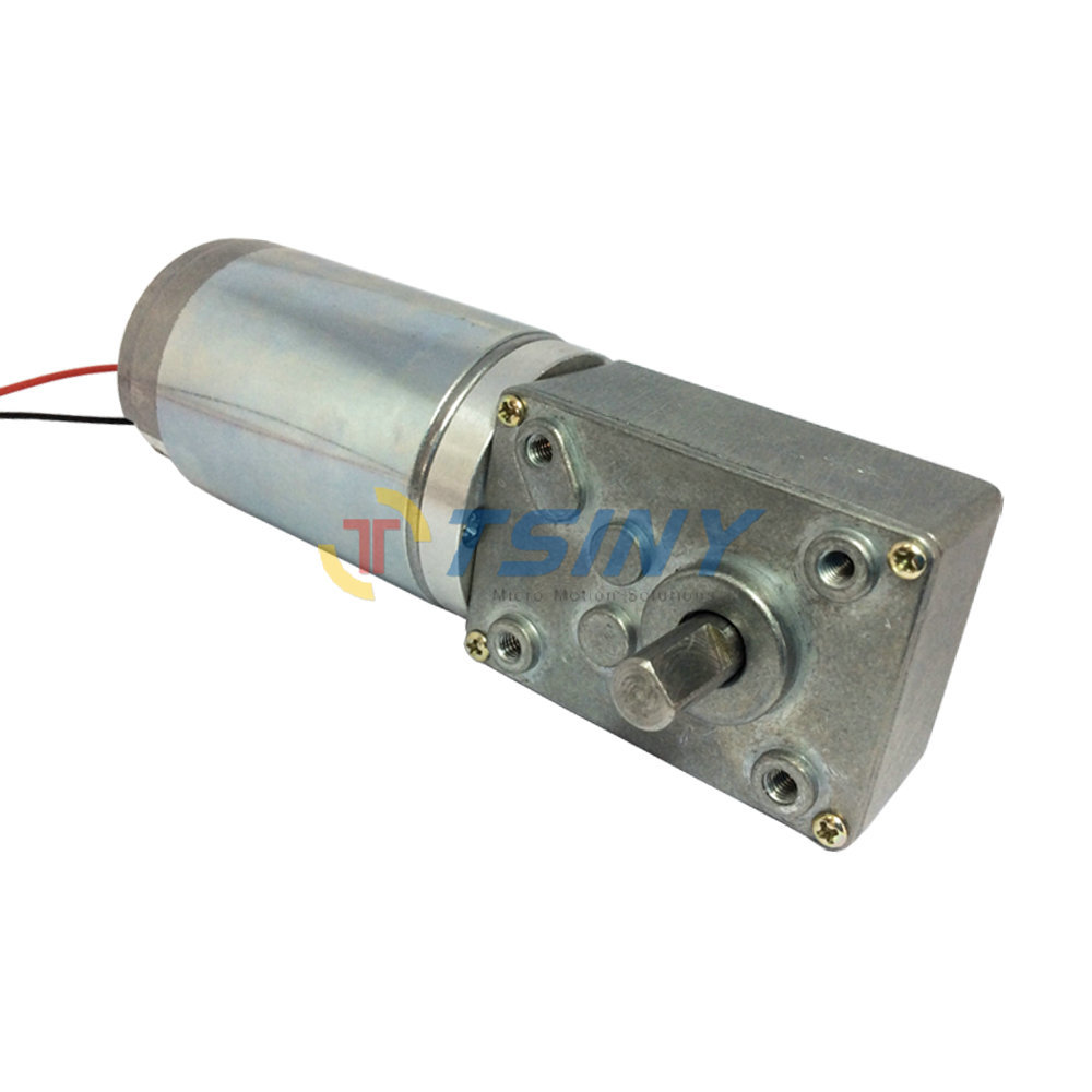 Dc worm gear motor china dc free engine image for user for Worm gear drive motor