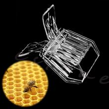 Plastic Queen Cage Clip Bee Catcher Beekeeper Beekeeping Tool Equipment(China (Mainland))