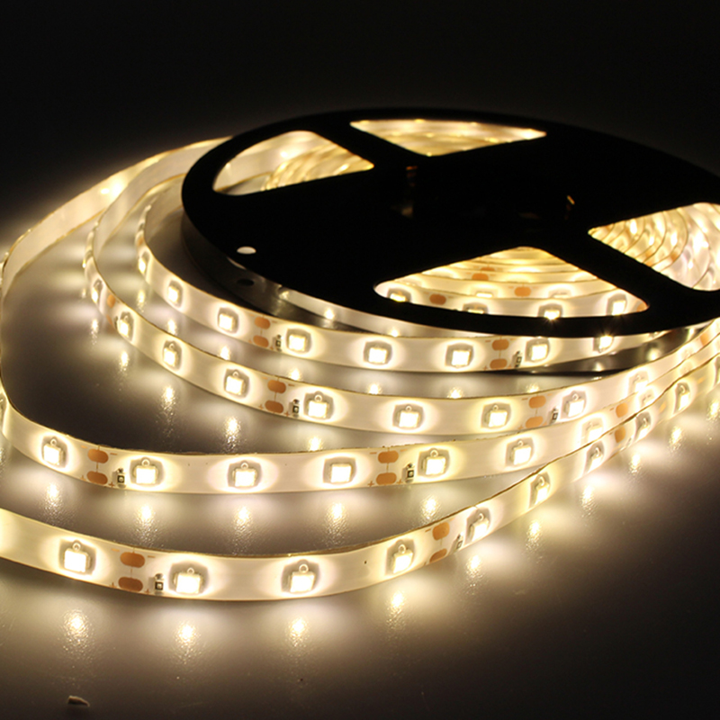 5m 300LED 3528 SMD waterproof 12V flexible light 60led/m LED strip white/warm white/blue/green/red/yellow/rgb free shipping<br><br>Aliexpress