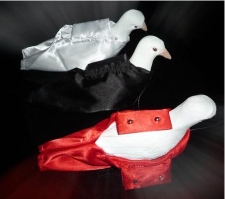 professional dove bag button type(black/red color), dove magic, close-up,illusions, fire magic,Accessories(China (Mainland))