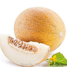 Buy Hot selling 1 original packing Cantaloupe (Cucumis melo var. )seed Delicious fruit bonsai plant DIY home garden free for $1.20 in AliExpress store