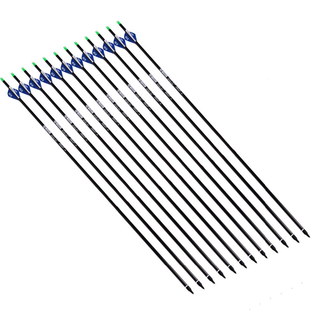 12 pcs lot New 31 inch Long Carbon Shaft Carbon Arrows with Steel Point Spine 350