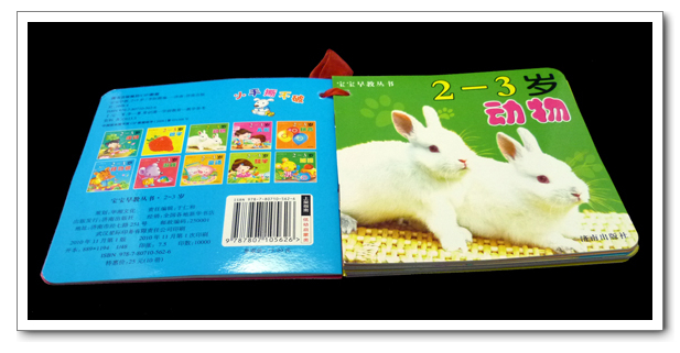 Free shipping New arrival 88sqm baby 2 - 3 , set 10 book packaging(China (Mainland))