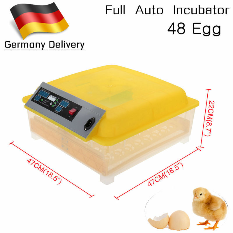 how to clean an egg incubator